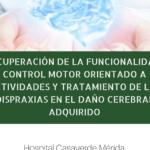 Recuperación de la funcionalidad: Control motor orientado a actividades y tratamiento de las dispraxias en el daño cerebral adquirido
